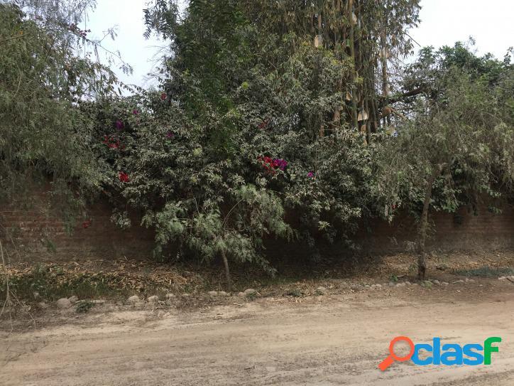 Terreno Residencial en Pachacamac - 00500 2