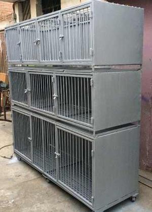 Canil y jaulas de acero y fierro para 9 animales veterinaria