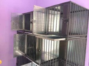 Jaulas canil de acero y fierro para 9 animales veterinaria