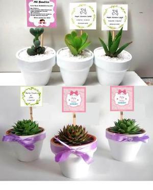 Recuerdos De Bautizo Con Cactus.Cactus Suculentas Matrimonios Anuncios Enero Clasf