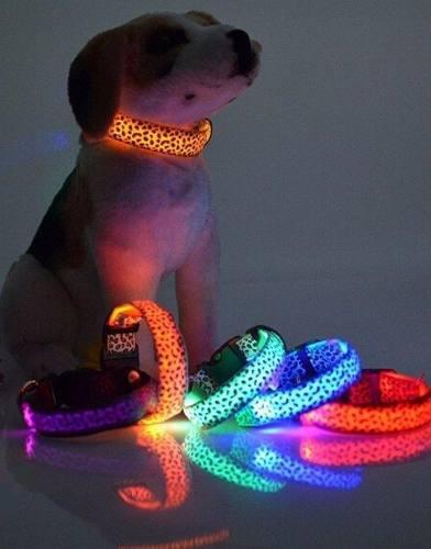 Collares led para perro - animal print - excelentes!