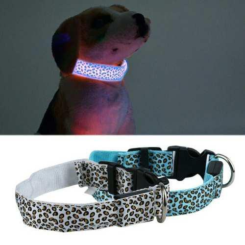 Collar importado para perros con luz led fosforescente.