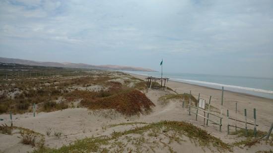 Terreno Balneario Venta Sector Las Salinas Canoas De Punta