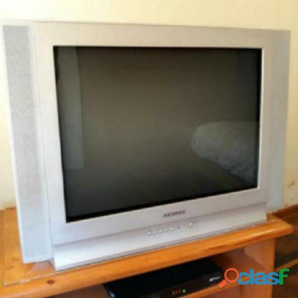 """Tv 29"""" samsung con control remoto"""