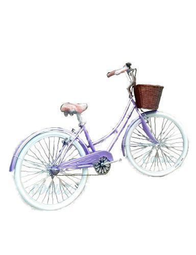 Bicicleta mujer retro vintage paseo aro 26 canasta