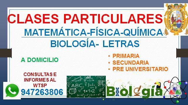 Profesor de matemática, física, química, biología y