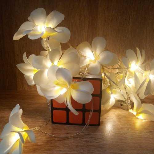 Luz led decorativa navidad 1.5m 10 pila dec g1hx