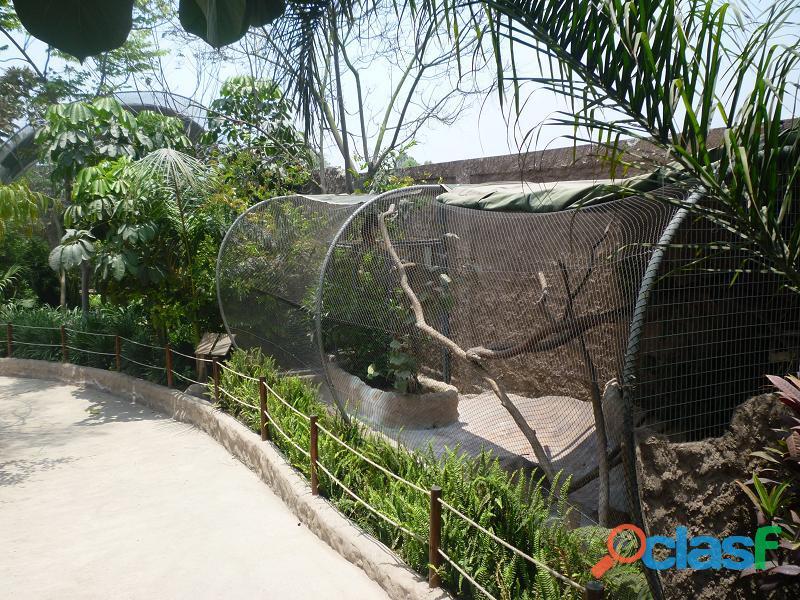 Mallas proteccion de aves