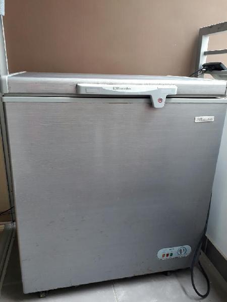 Congelador / frezeer