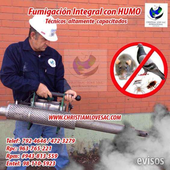 Fumigamos insectos rastreros y voladores con humo 792-4646