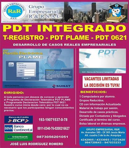 Pdt integrado, clases de plame, planilla electronica, igv -