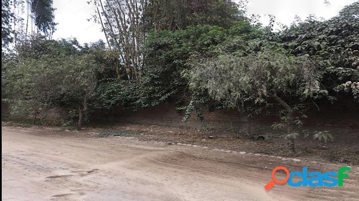 Terreno Residencial en Pachacamac - 00500 3