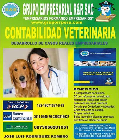 Contabilidad veterinaria, clases de contabilidad para