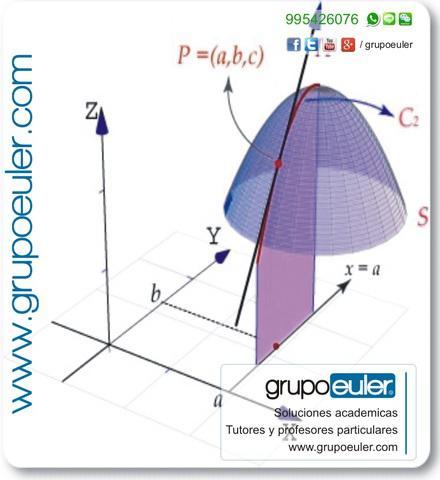 Profesor uni particular tutor de matemática física