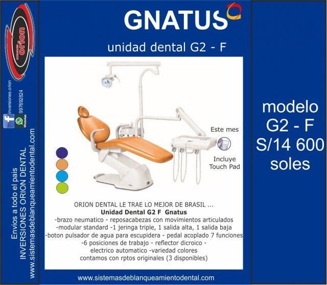 Sillon unidad equipo dental gnatus g2 f