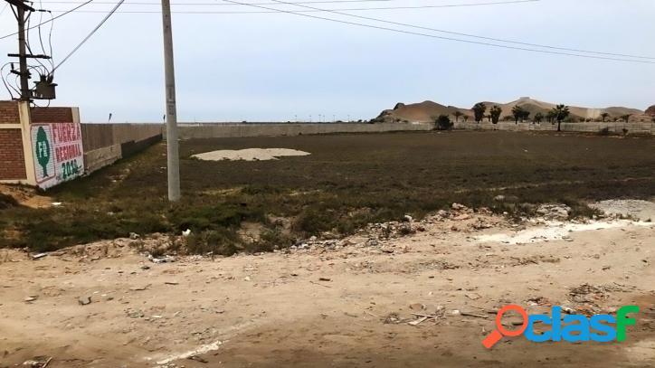 Venta de Terreno en Cerro Azul - 00713