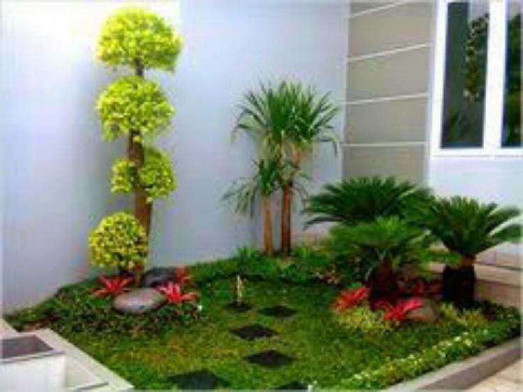 Servicios de jardineria,jardinero c/exp.