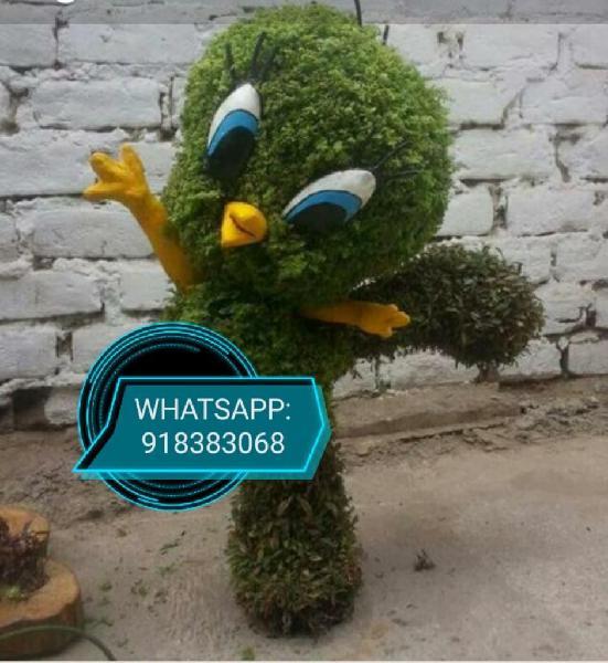 Jardinero Paisajista,venta:grass,plantas