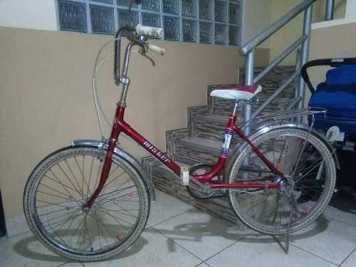 Bicicleta mister de paseo