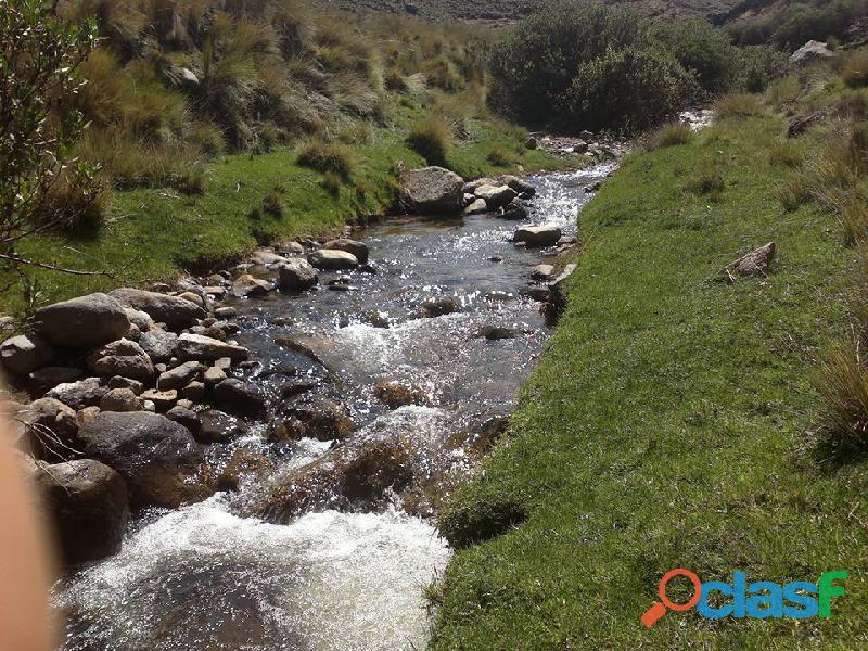 Se vende terreno rural con pastizales naturales agua propia de manantial todo el año