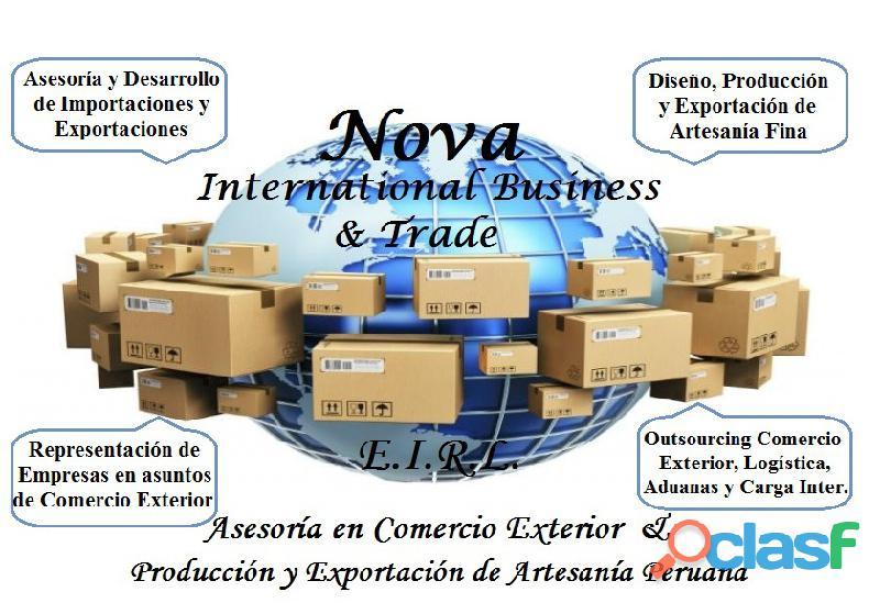 Asesor asesoría y desarrollo de importaciones   comercio exterior