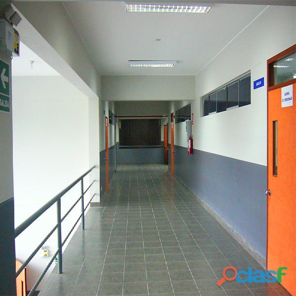 Pintores profesionales 910483816 , pintor de casas , empresas