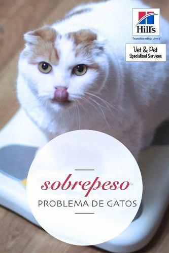 Alimento para perros y gatos marca hill´s