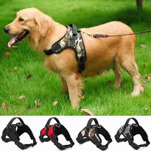 para reposacabezas Duradero arn/és de Seguridad para Mascotas Ajustable cintur/ón de Seguridad LKY Cintur/ón de Seguridad para Perro