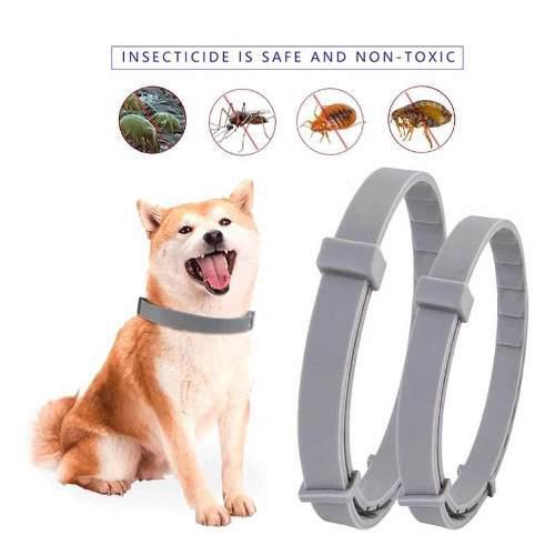 Collar anti pulgas 8 meses protegidos #pipeta #repelente