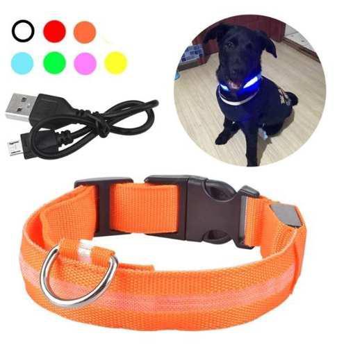 Collar led perro evita accidentes