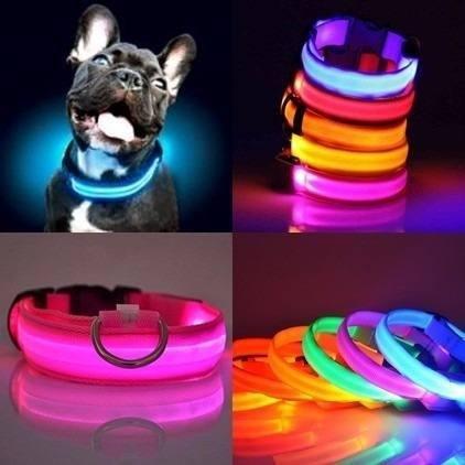 Collares led para perros