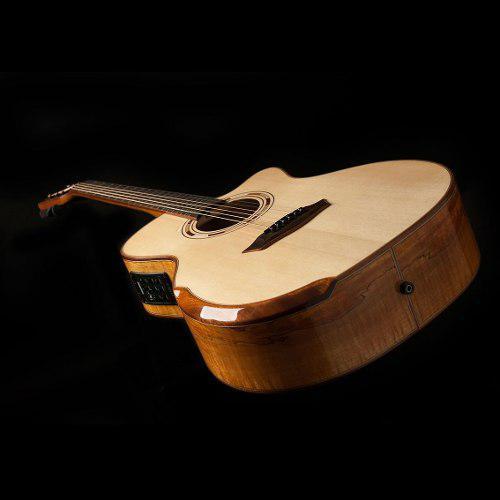 Guitarra Electroacusticas Wcg66sce Washburn + Envio