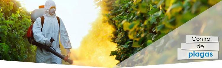 fumigacion y controlo de plagas con garantia