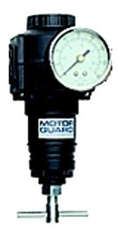 Proteccion del motor m830 34 npt shop air regulator