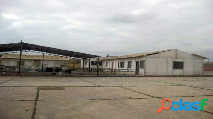 Venta de local industrial en paracas - 00739