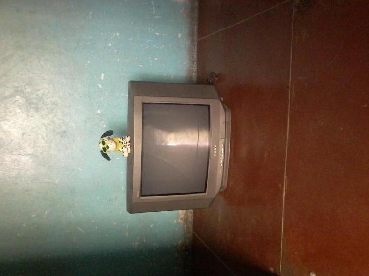 Television SONY 21 PULGADAS, No se ve la imagen solo SONIDO