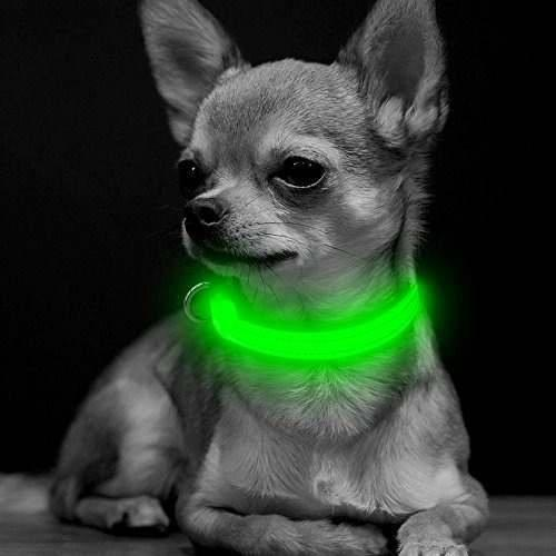 Bseen led collar de perro usb recargable brillante xs collar