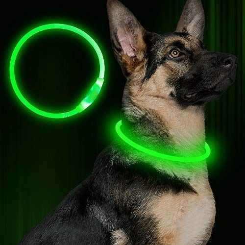 Bseen llevo el collar de perro, usb recargable, brillante co