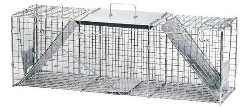 Havahart 1045 mapache de dos puertas con animales vivos, gat