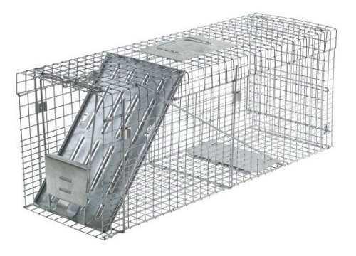 Havahart 1089 trampa plegable para jaulas de animales vivos