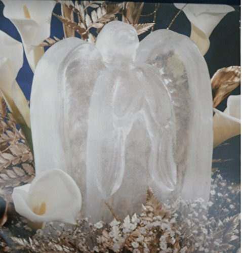 Molde reutilizable de escultura de hielo de angel con consej