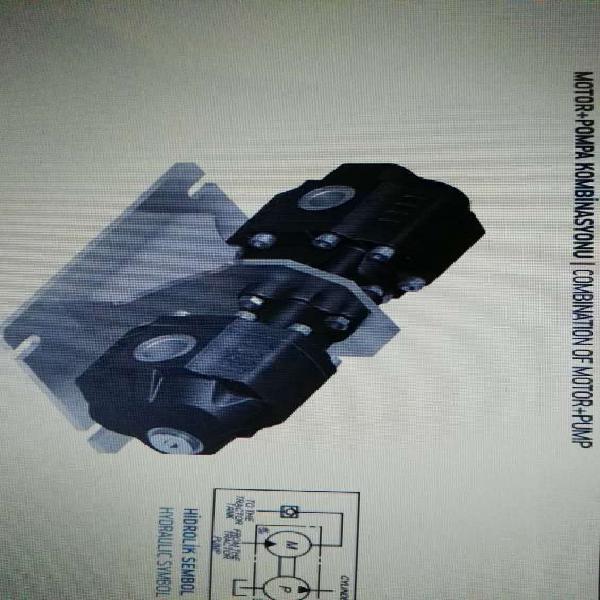 Bomba hidráulica y motor hidráulico juntos (hidromotor)