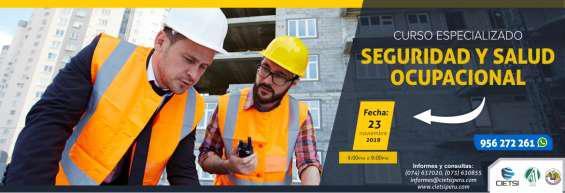 Curso especializado seguridad y salud ocupacional 2019