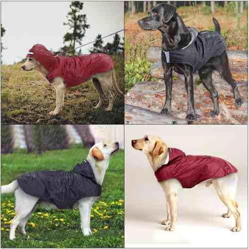 Impermeable casaca chaqueta perro mediano 3xl ultima negro
