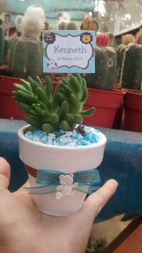 Recuerdos ecológicos de cactus bautizos baby shower bodas