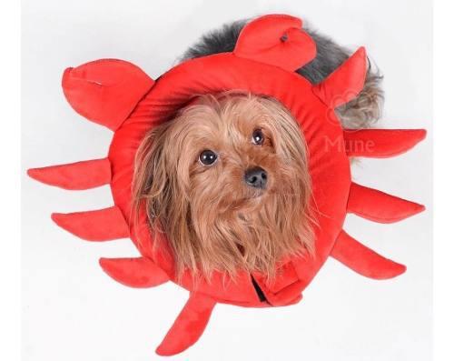 Collares isabelinos suaves perros y gatos modelo cangrejo