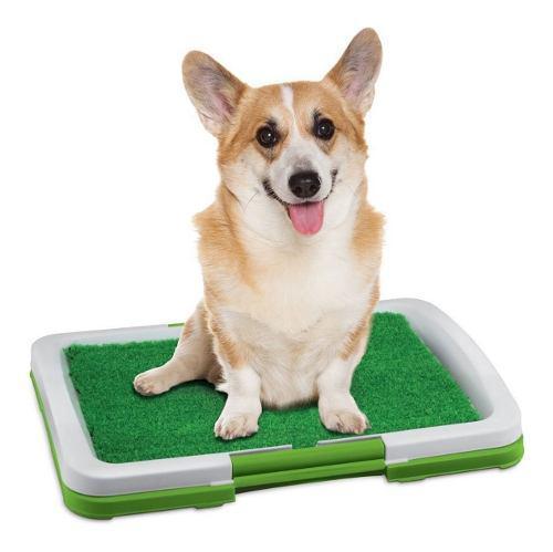 Baño portatil mascotas perros gatos cesped orinar etc