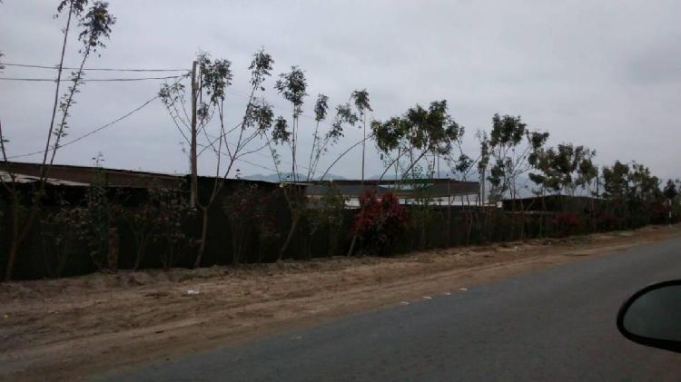 Venta de 10 000 m² de terreno urbano - distrito del