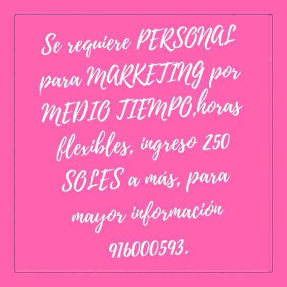 C/s experiencia marketing en chiclayo