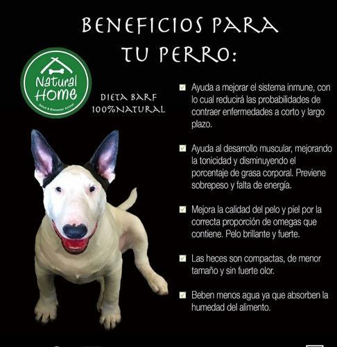 Dieta B.a.r.f De Natural Home Alimento Natural Para Perros